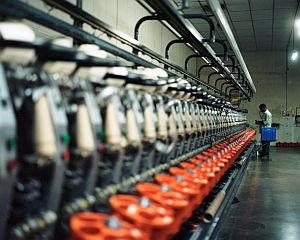 Impressionen der Baumwollproduktion