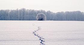 Winteraktivitäten – keine Langeweile in der kalten Jahreszeit
