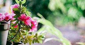 Ihr Balkon – Ihr Rückzugsort: Tipps für die Deko