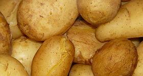 Wie kocht man Pellkartoffeln?